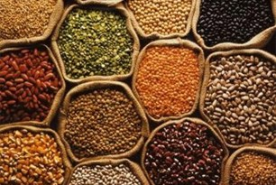 Rice, wheat, corn, pulses and seeds